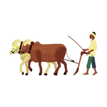 Vector allegro contadino indiano cibo nudo che ara il campo per mezzo di mucche con il tradizionale foulard in testa. Personaggio maschile del villaggio rurale dell'India, del Pakistan o del Bangladesh, lavoratore dell'industria agricola.