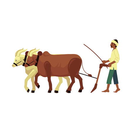 Vector cheerful indian farmer barefood plowing field by means of cows with traditional headscarf at head. Rural india, pakistan or bangladesh village male character, agriculture industry worker.