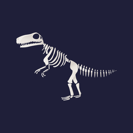 Vector tyrannosaurus dinosaur fossil skeleton. Prehistoric predator, jurrasic giant animal icon. Paleontologu and archeology artifact. T-rex monster white silhouette. Illustration
