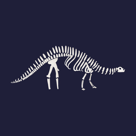 Vector diplodocus dinosaur fossil skeleton. Prehistoric herbivores, jurrasic giant animal icon. Paleontology and archeology artifact. white silhouette on blue