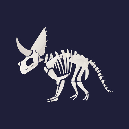 White skeleton and bones of a triceratops dinosaur in flat cartoon style, vector illustration.