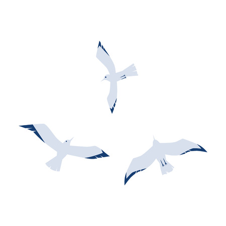 Seagulls in a flat cartoon style isolated on white background, vector illustration.