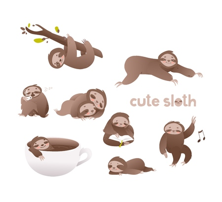 Cute sloth vector illustration set - funny adorable lazy sleepy animal in various actions such as hanging on tree and crawling, drinking coffee and reading in flat style isolated on white background.