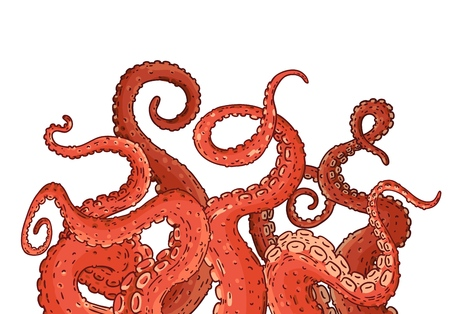 Red octopus tentacles reaching upwards, squid like marine animal body parts protruding from out of frame, cut for food or frame design, cartoon sketch vector illustration isolated on white background