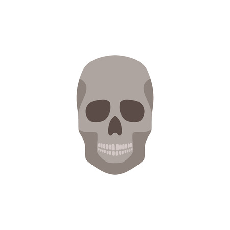 Human skull anatomically correct front view part of skeleton flat vector illustration isolated on white background. Element of halloween party or educational biological design.