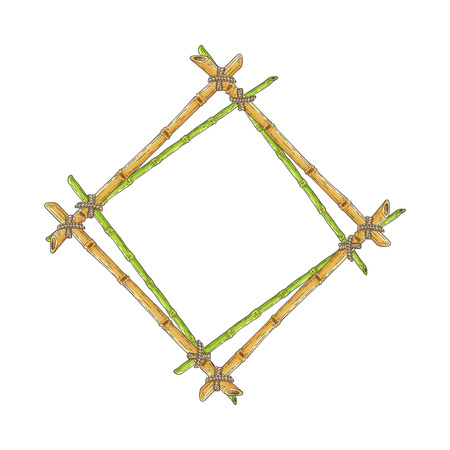 Wooden rhombic double frame from bamboo sticks sketch style, vector illustration isolated on white background. Rhomb-shaped border template from natural tropical material