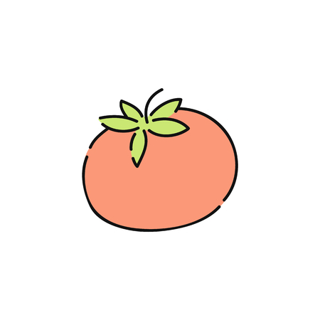 Fresh red tomato icon, isolated organic vegetable drawing on white background. Hand drawn sketch doodle of healthy natural plant food, vector illustration.