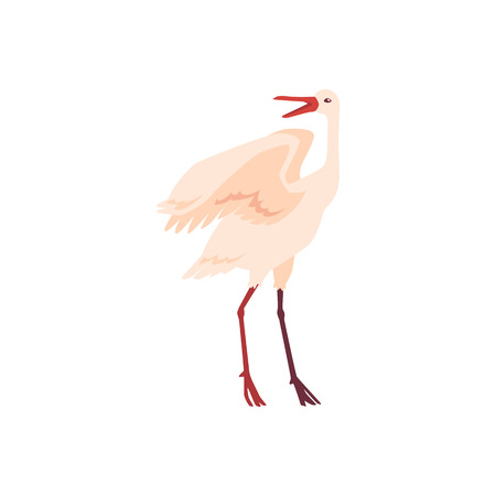 Vector hand drawn crane bird icon. Sketch flying white animals standing communicating with another birds with open beak. Elegant stork, symbols of china and asia. Isolated illustration