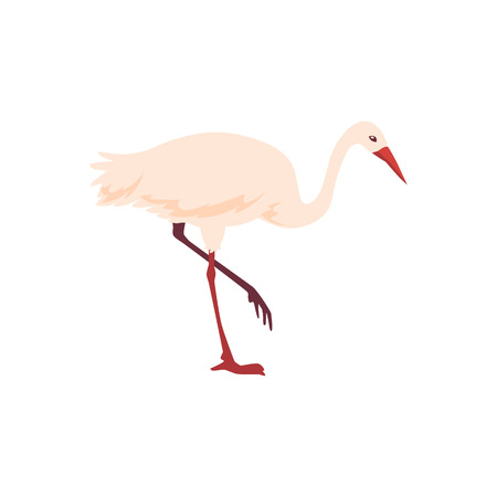 Vector hand drawn crane bird icon. Sketch flying white animal looking for fish. Elegant stork, symbols of china and asia. Isolated illustration Illustration