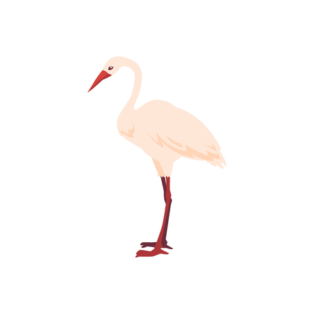Vector hand drawn crane bird icon. Sketch flying white animals standing side view. Elegant stork, symbols of china and asia. Isolated illustration Ilustrace