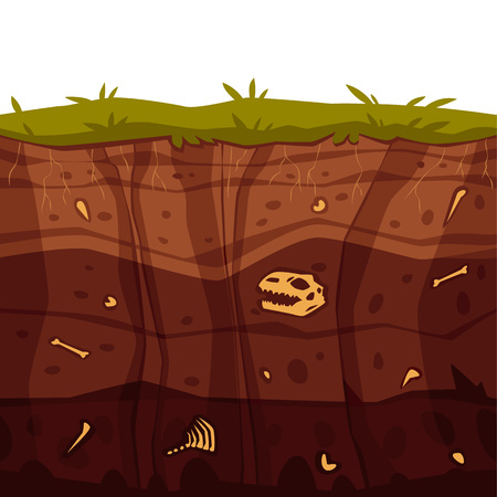 Vector soil ground layers with grass, underground fossil dinosaur bones texture. Subterranean landscape for game map design. Layered earth surface, geological natural clay.