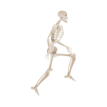 White skeleton running motion - sideways view of body with leg lifted and ready to run - vector illustration isolated on white background