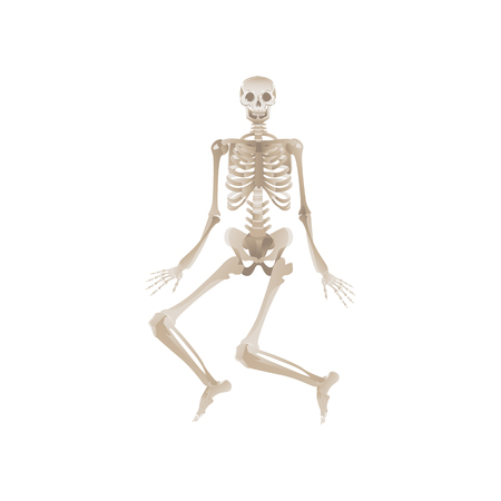 Vector funny human skeleton dancing. Body anatomy with skull, bones having fun. Dead man moving in funny position. halloween holiday, scary design decoration. Standard-Bild - 122455588