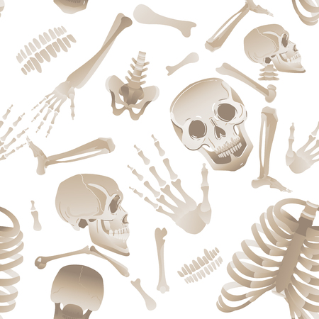 Happy cute skeleton bones seamless partern. Scary and funny skull anatomical design for Halloween party vector illustration isolated on white background.