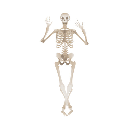 Cheerful skeleton dancing pose for Halloween or other party design. Scary horror objects vector illustration isolated on white background. 일러스트