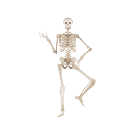Cheerful skeleton dancing pose for Halloween or other party design. Scary horror objects vector illustration isolated on white background. 矢量图像