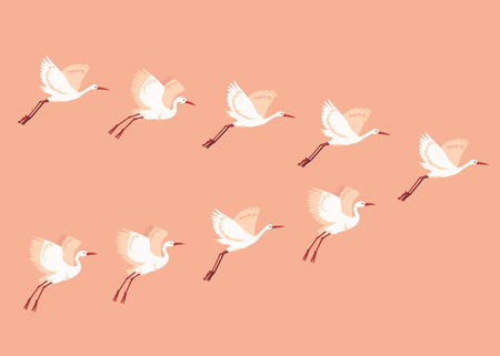Vector hand drawn crane flock of birds. Sketch flying white animals migrating in group. Elegant storks, symbols of china and asia. Illusztráció