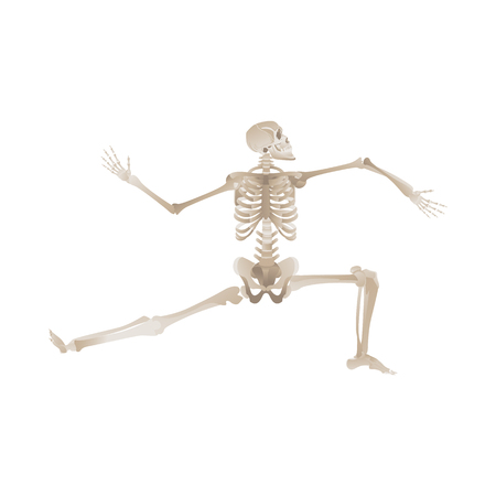 Vector funny human skeleton dancing. Body anatomy with skull, bones having fun. Dead man moving in funny position. halloween holiday, scary design decoration. 向量圖像