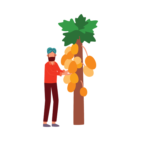 Indian farmer man stands showing fruit on papaya tree flat cartoon style, vector illustration isolated on white background. Bearded male in turban with agriculture crop