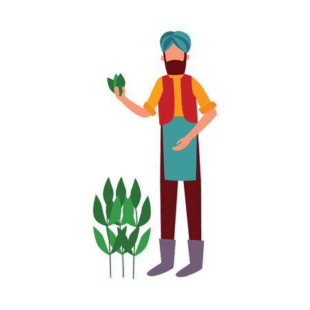 Indian farmer man stands holding cotton plant leaves flat cartoon style, vector illustration isolated on white background. Male in traditional clothes and turban with agriculture crop