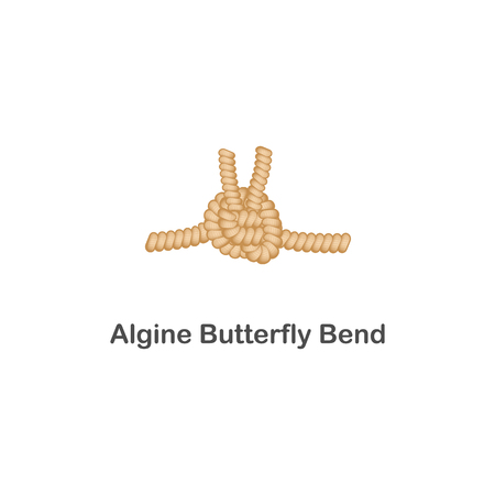 Algine butterfly bend, type of marine knot. Rope with loops for sailors and decoration, vector isolated illustration.