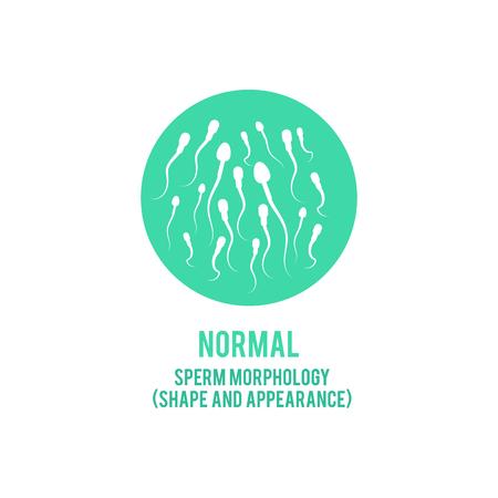 Wektor normalnych plemników morfologii koncepcja kształtu i formy. Płodność męska, ikona zdrowego nasienia. Zdrowie reprodukcyjne mężczyzn, element projektu nawożenia medycznego. Ilustracje wektorowe