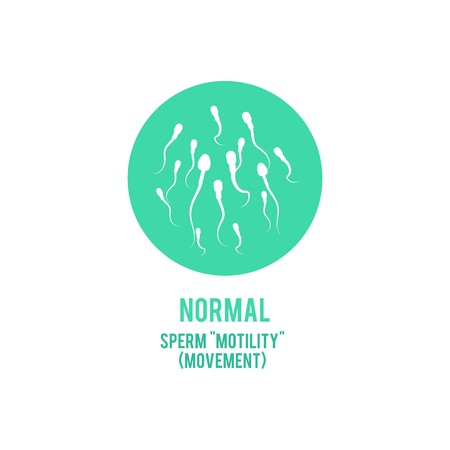 Vector normal spermatozoids motility or movement concept. Male fertility, healthy semen icon. Reproductive men health, medical fertilization design element.