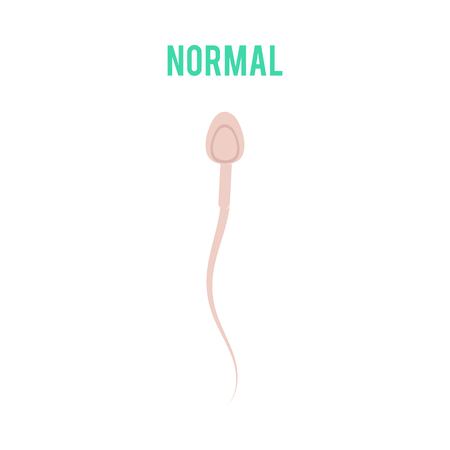 Vector normal spermatozoid motility or movement concept. Male fertility, healthy semen icon. Reproductive men health, medical fertilization design element. Illustration