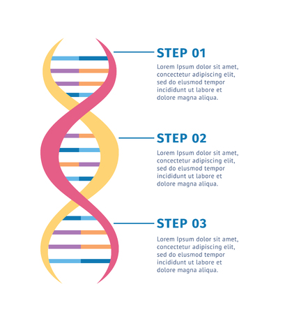 Genetic structure of DNA molecule vector illustration isolated on white background. Scientific biological model of genetic spiral for educational concepts. Stock Vector - 122854031