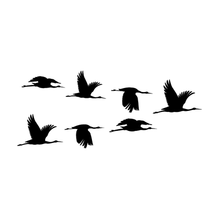 Silhouette or shadow black ink symbol of flock of crane birds or herons flying icon. Group of storks outline template or creative background vector illustration isolated on white. Ilustração