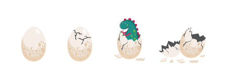 A cute dinosaur hatching from an egg and egg in different stages of crashing vector illustration isolated on white background. Birth of little prehistoric reptile item.