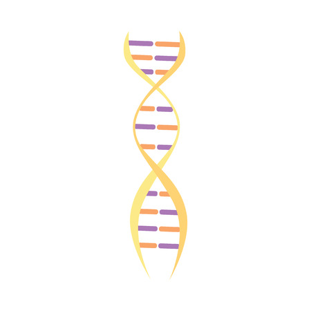 DNA or genome molecule medical icon vector illustration isolated on white background for web and mobile apps. Biotechnology concept of human genetic evolution. Ilustrace