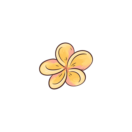 Tropical yellow flower from Hawaii isolated on white background. Single small exotic frangipani blossom head - beauty of Hawaiian nature drawn in cartoon icon style, flat vector illustration