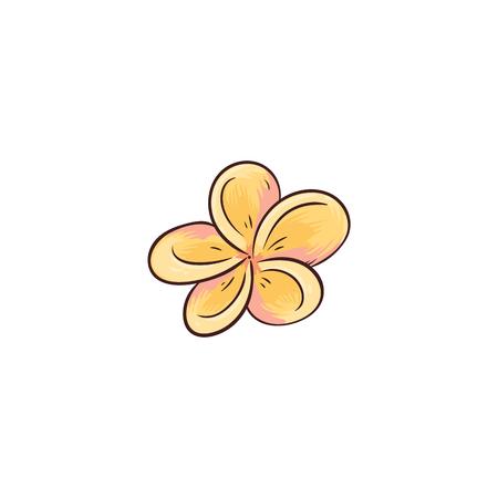 Tropical yellow flower from Hawaii isolated on white background. Single small exotic frangipani blossom head - beauty of Hawaiian nature drawn in cartoon icon style, flat vector illustration Illusztráció