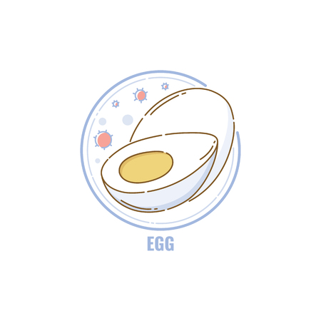 Icon of whole and half eggs in circle flat linear style, vector illustration isolated on white background. Symbol of food allergen ingredient, boiled egg color line icon