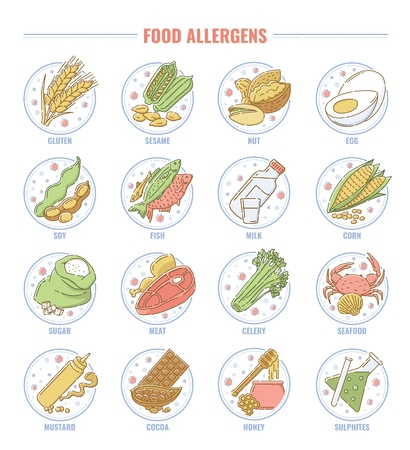 Food allergen set, collection of gluten, nut, fish, milk, lactose, egg, and other allergy products icons for health and nutrition, isolated hand drawn cartoon vector illustration on white background Ilustracja