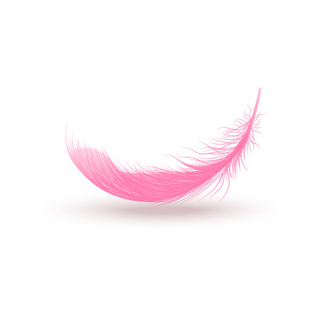 Falling pink fluffy swirled feather close up 3d realistic vector illustration isolated on white background. Design template clipart of angel or bird detailed feather.