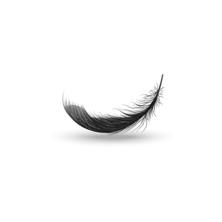 Single falling or hovering curved fluffy black feather realistic style, vector illustration isolated on white background. One dark soft bird feather floating above surface and its shadow Illustration
