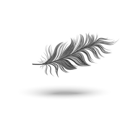 Single fluffy black feather falling or hovering on side realistic style, vector illustration isolated on white background. One dark soft bird feather floating in air and its shadow