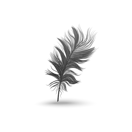 Single fluffy black feather falling or hovering upright realistic style, vector illustration isolated on white background. One dark soft bird feather floating above surface and its shadow Ilustração