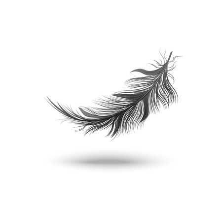Black falling fluffy swirled feather vector illustration isolated on white background. 3d realistic object or icon of bird plume with clearly defined outline and shadows. Ilustração