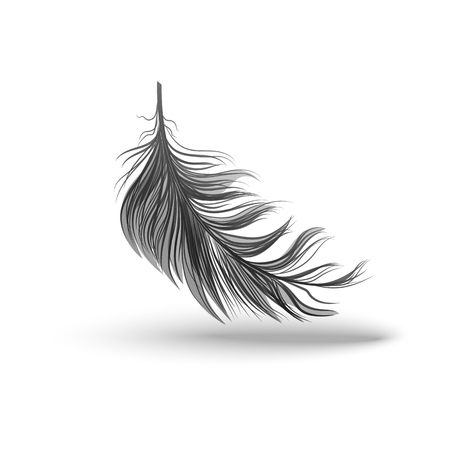Black falling fluffy swirled feather or element of bird plume 3d realistic vector illustration isolated on white background with clearly defined outline and shadows.