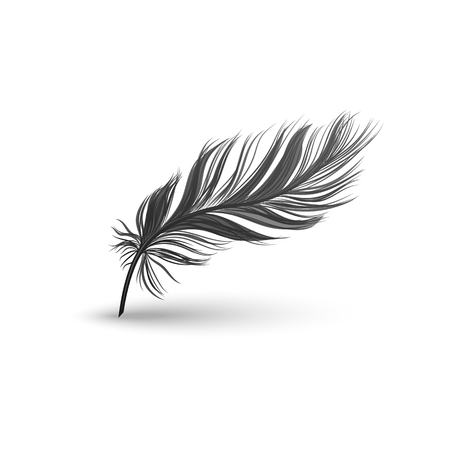 Black falling fluffy feather or bird plume with bending element 3d realistic vector illustration isolated on white background with clearly defined contour and shadows.
