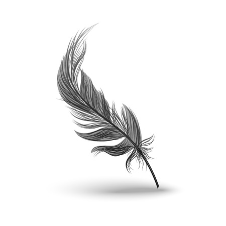 Black falling fluffy feather with bending vector illustration isolated on white background. 3d realistic object or icon of bird plume with defined outline and shadows.