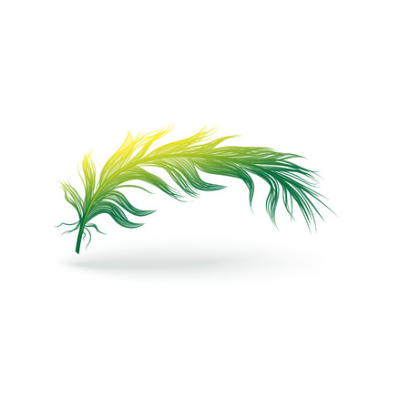 Light curved magical feather from the wing of a bird. Fluffy green and yellow feather silhouette with gradient and shadow. Vector isolated illustration of bird feather icon.