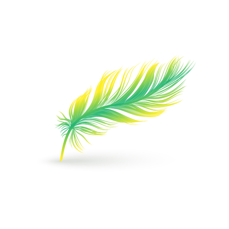Light graceful colorful feather from a wing of a bird. Fluffy green and yellow flying single feather, vector isolated illustration of bird feather icon.