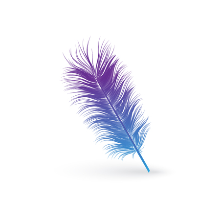 Fluffy blue and purple bird feather - isolated object on white background. Light and soft quill decoration or duster icon in realistic hand drawn style, vector illustration