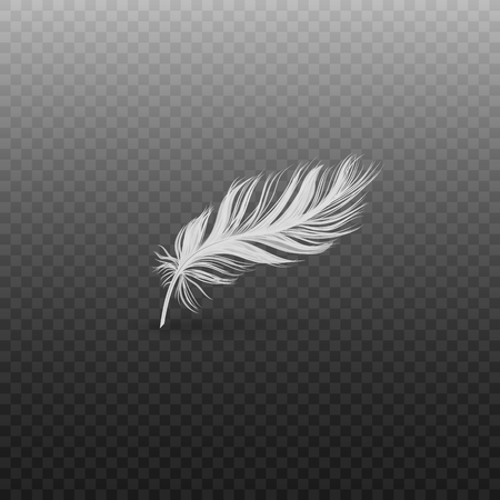 Single falling or hovering curved fluffy white feather realistic style, vector illustration isolated on black transparent background. One light soft bird feather standing or floating above surface