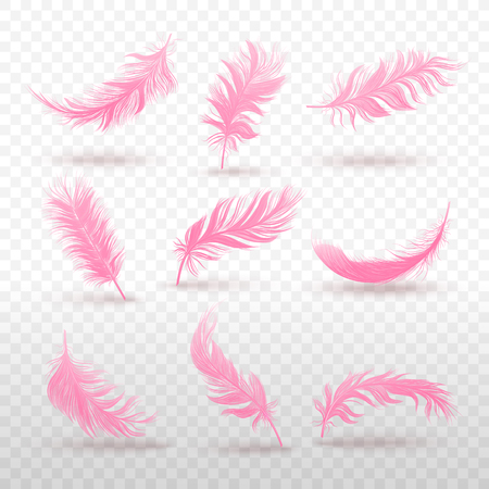 Vector 3d realistic different falling pink fluffy feather set close up Isolated on transparency grid background. Design template clipart of angel or bird detailed feather in various shapes.