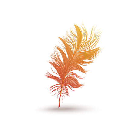 Fluffy feather from the wing of a fantastic bird. Single icon, orange feather silhouette, isolated vector illustration on white background.